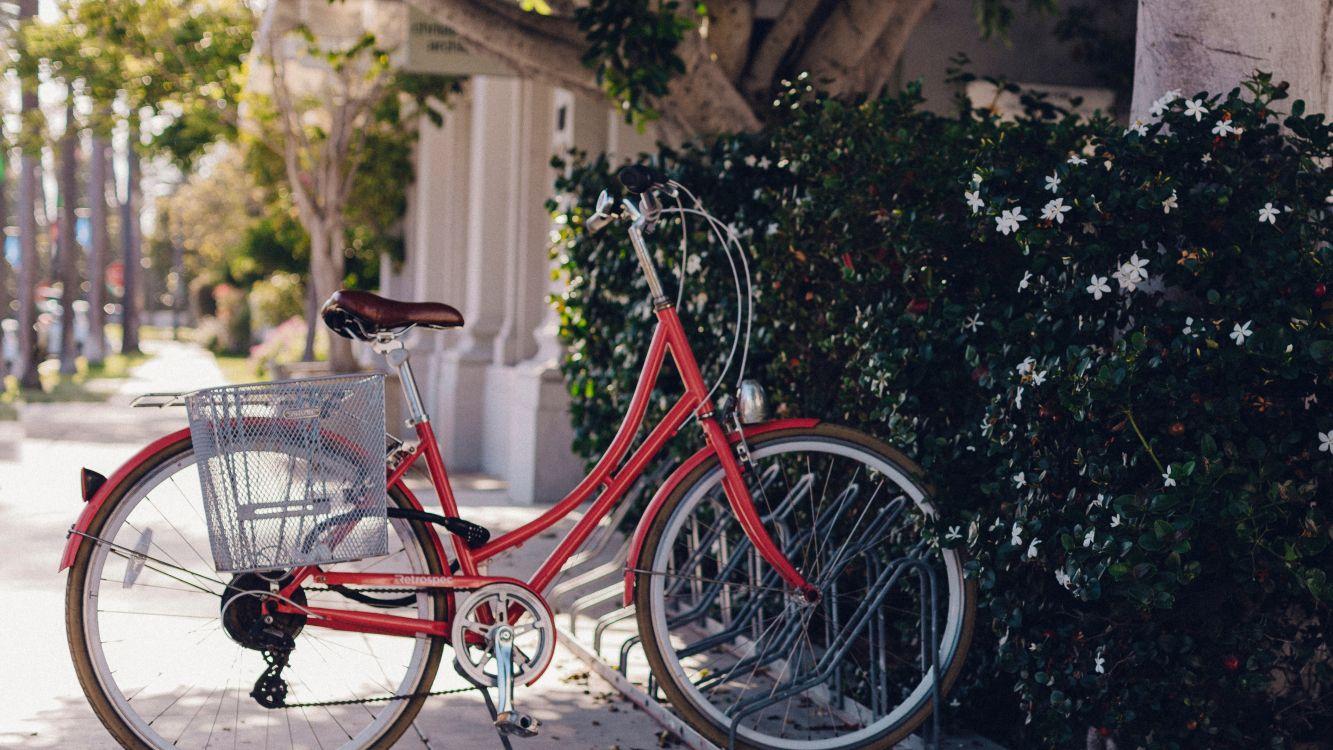 Обои дорожный велосипед, парковка, красный цвет, велосипедное колесо, спица в разрешении 3840x2160