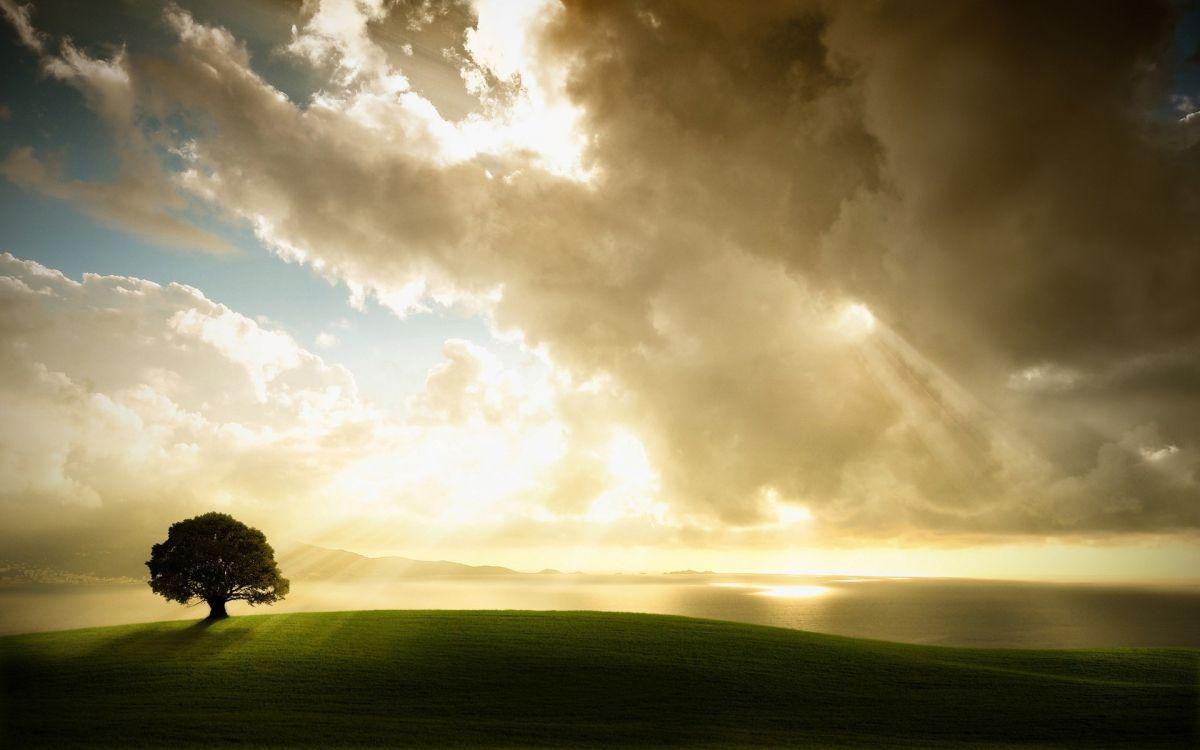 Обои свет, Облака. Природа foto 11