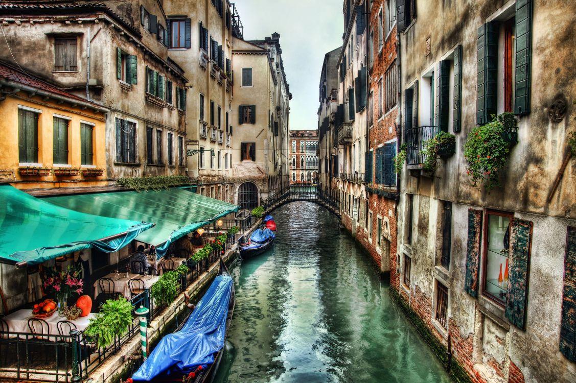 хочу в венецию картинки селекционеров